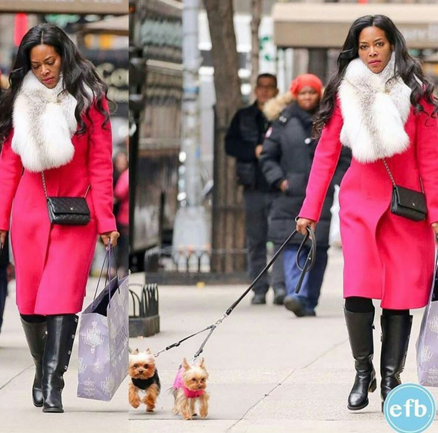 Kenya Moore with her pets