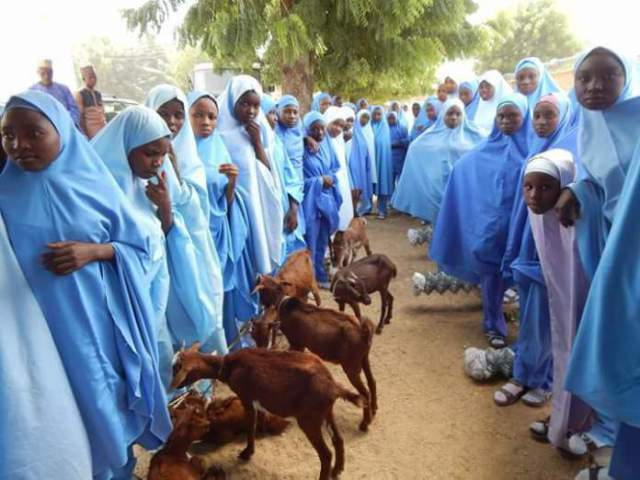 The beneficiaries of the goats lined up with their goats at GGASS Dutsinma on Saturday, November 11, 2017. Credit: Katsina Post Hausa