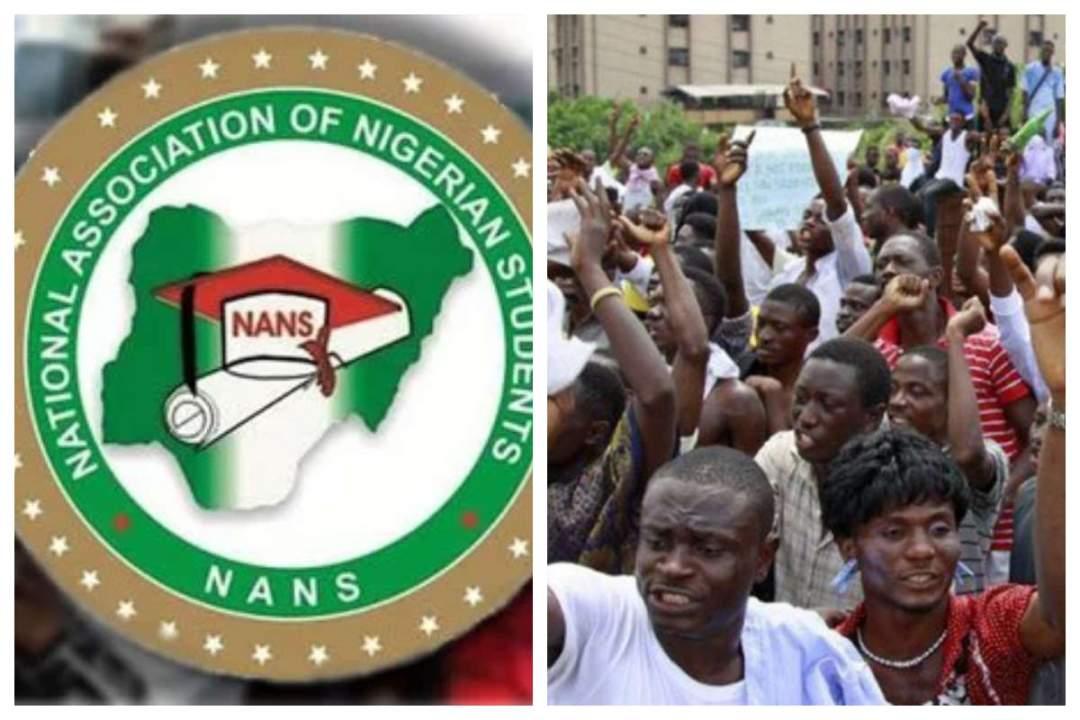 ASUU strike: NANS threatens to boycott 2019 elections
