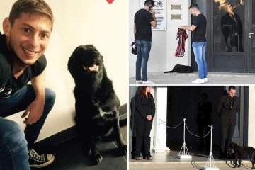 Emiliano Sala's faithful dog attends funeral of late footballer as family break down into tears (photo)