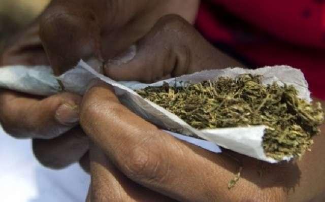 Wrapping marijuana (Citifm Online)