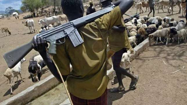 Gun-wielding herdsmen on the prowl across Nigeria (Guardian Nigeria )