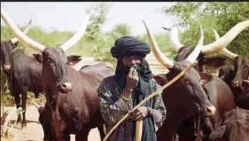 Sacrilege: Two Catholic priests, others reportedly murdered by Herdsmen