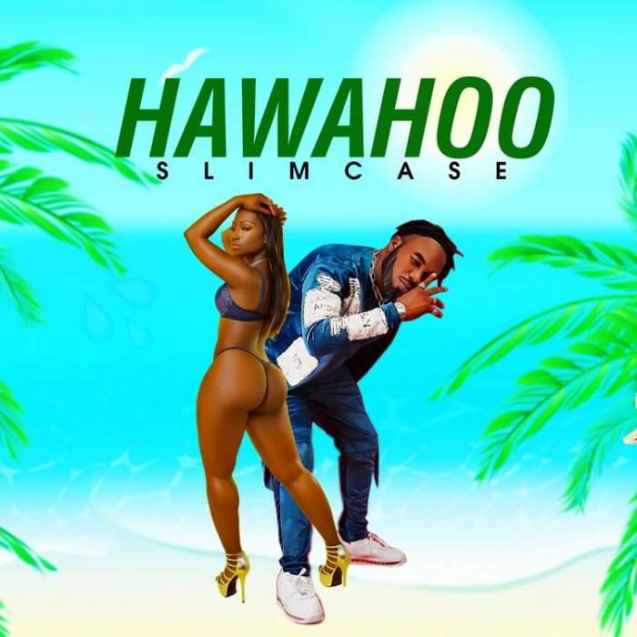 Slimcase - Hawahoo