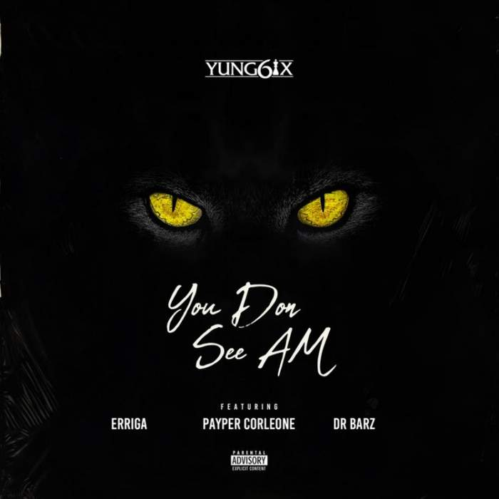 Yung6ix - You Don See Am (feat. Erigga, Payper Corleone & Dr Barz)