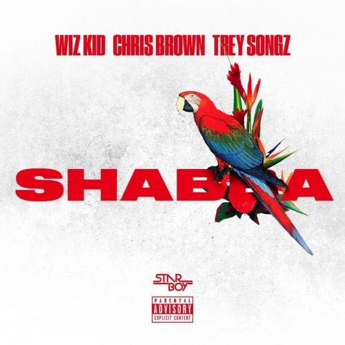 Wizkid - Shabba (Instrumentals) (ft. Chris Brown, Trey Songz & French Montana)