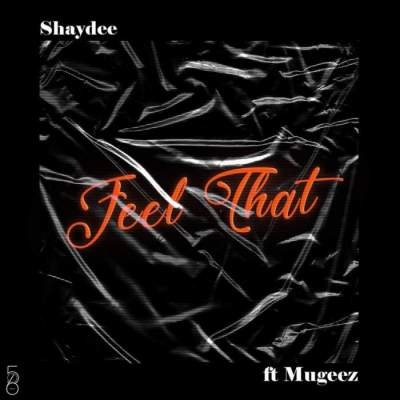 Music: Shaydee - Feel That (feat. Mugeez)