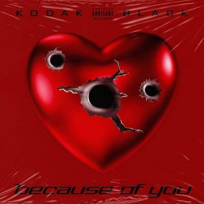 Music: Kodak Black - Because of You