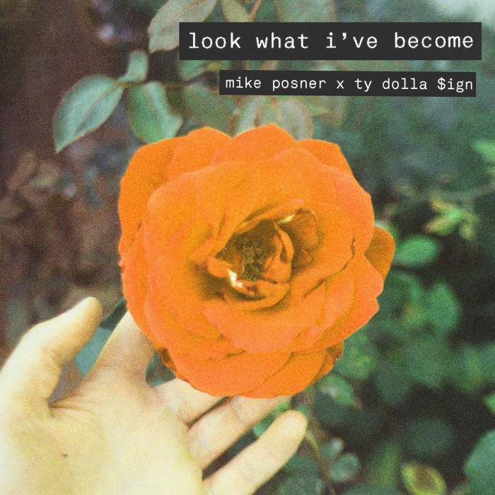 Music: Mike Posner - Look What I've Become (feat. Ty Dolla Sign)