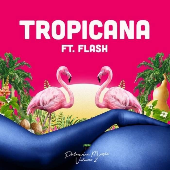 Show Dem Camp - Tropicana (feat. Flash)