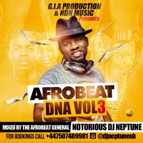 Notorious1 DJ Neptune - Afrobeat DNA (Vol. 3)