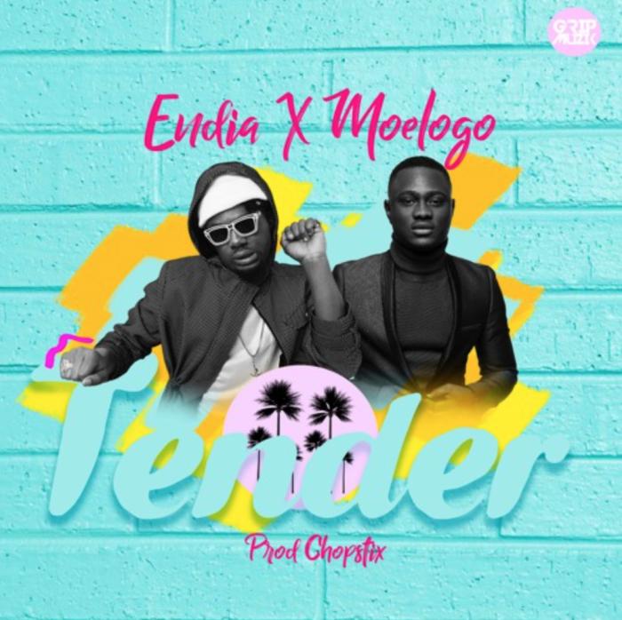Endia - Tender (feat. Moelogo)