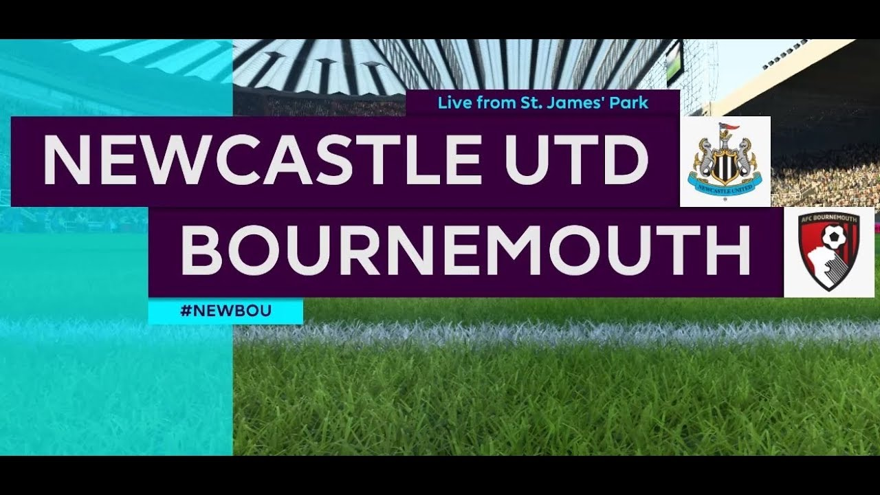 Newcastle United 2 - 1 Bournemouth (Nov-10-2018) Premier League Highlights