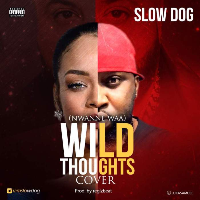 Slow Dog - Nwanne Waa (Wild Thoughts Cover)