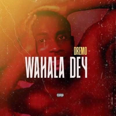 Music: Dremo - Wahala Dey