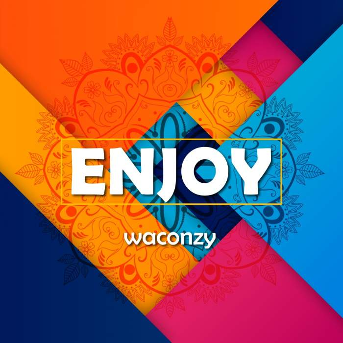 Waconzy - Enjoy