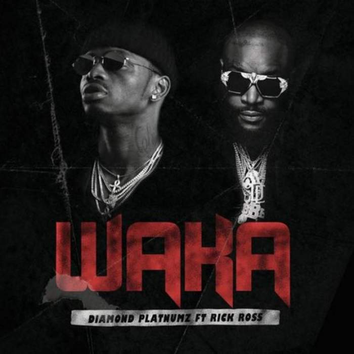 Diamond Platnumz - Waka (feat. Rick Ross)